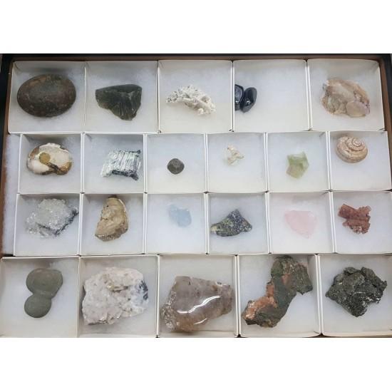 Collection minéraux - Internationale